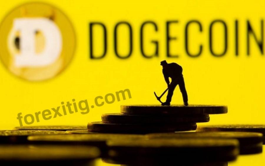 Dogecoin là gì Nên thận trọng đầu tư DOGE