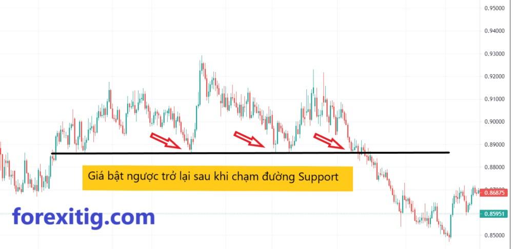 Giá quay ngược trở lại khi chạm hỗ trợ Support